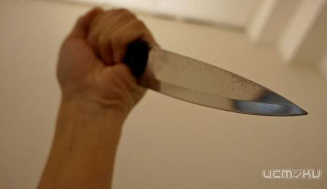 Летний гражданин Залегощенского района пырнул ножом 2-х орловчан