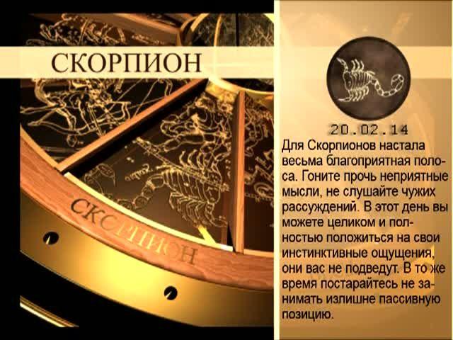 Гороскоп на 20 октября скорпион женщина