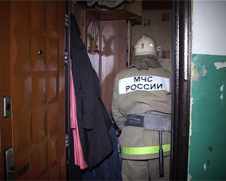 Работник МЧС изОрла реанимировал пострадавшую впожаре кошку