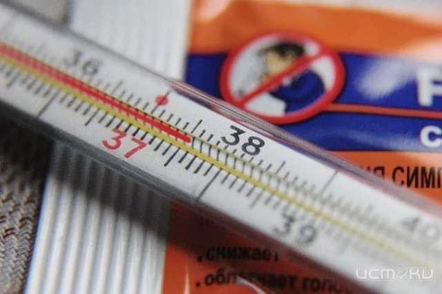 Роспотребнадзор: новые вспышки заболеваемости гриппом иОРВИ в20 областях