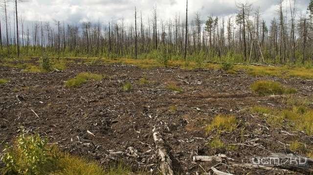 В Орловской области нашли радиоактивные поля