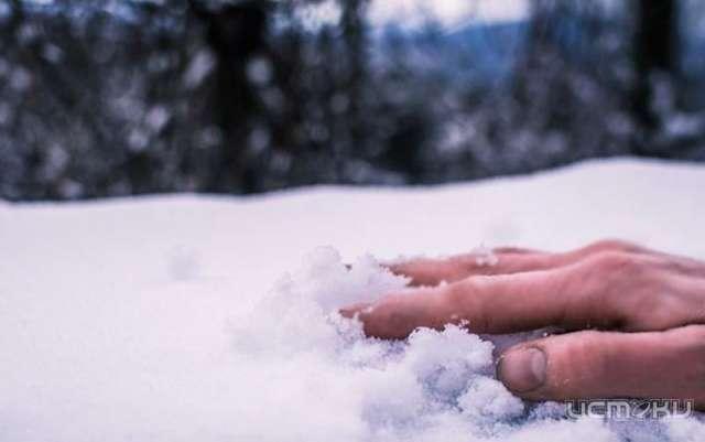 ВКолпнянском районе тело пенсионера пролежало под снегом около месяца