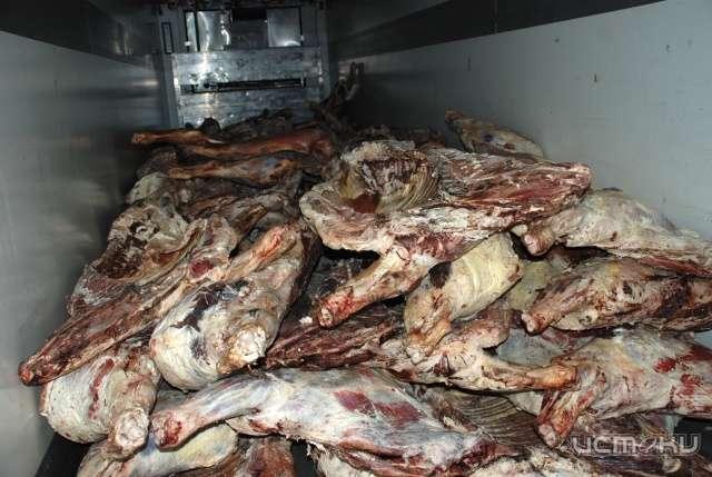 Курская таможня задержала контрабандное мясо
